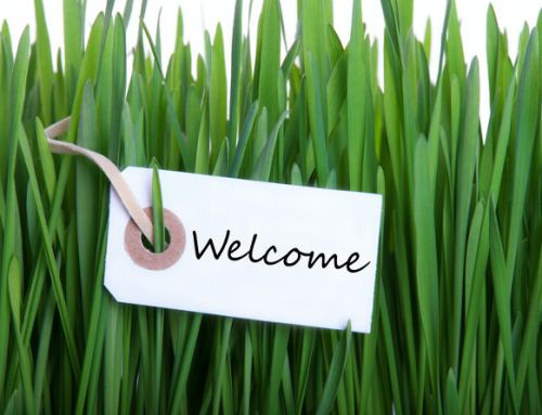 Welcome to the new blog from Robur Heat Pumps